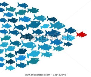 stock-photo-fishes-in-group-leadership-concept-131437046