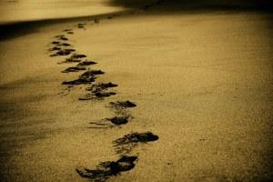 sand-768783__340